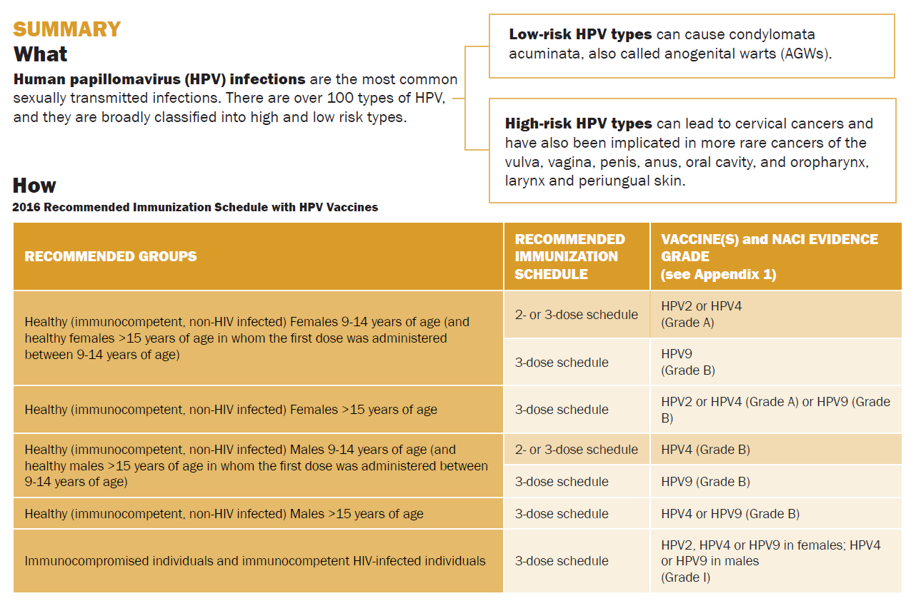 Hpv Vaccine Schedule | Examples and FormsHpv Vaccine Schedule